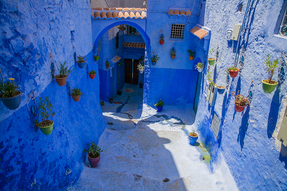 Yoga tour. The Blue city Chefchaouen & Imperial Cities 8 days / 7 nights