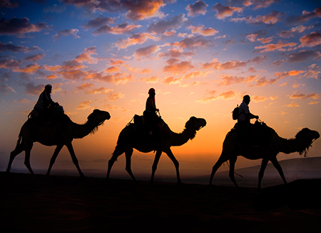 From Imperial Fez via desert to Marrakech / 5 days / 4 nights