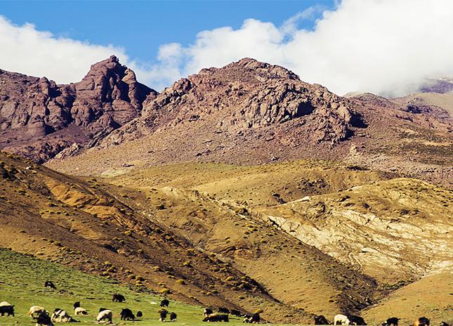 ATLAS MOUNTANS & THE SAHARA DESERT